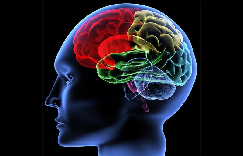 psychological-triggers-feature-mixed-digital-llc